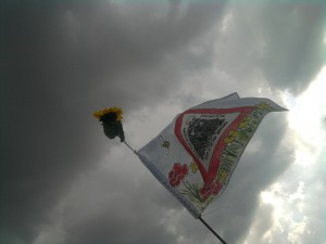 2005-03-08 02.07.29